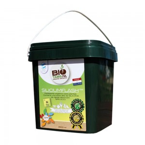 BioTabs Silicium Flash 2,5 Liter
