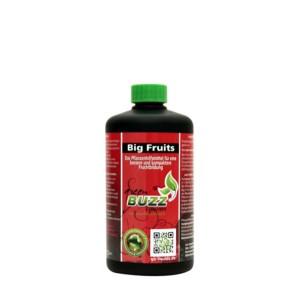 Green Buzz Big Fruits 500 ml NEU