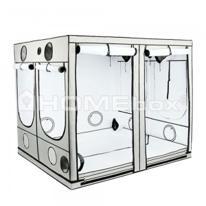 Homebox Ambient Q 300