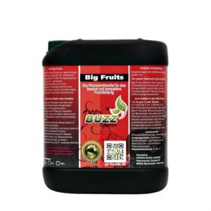Green Buzz Big Fruits 5 Liter