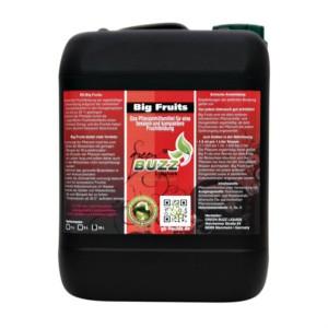 Green Buzz Big Fruits 10 Liter