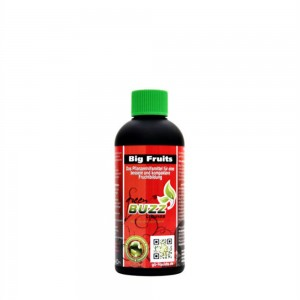 Green Buzz Big Fruits 100 ml