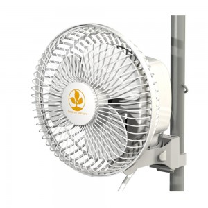 Secret Jardin Monkey Fan 16 W