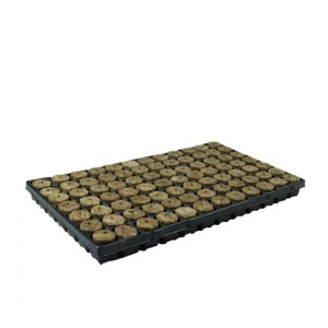 Speedgrow Tray
