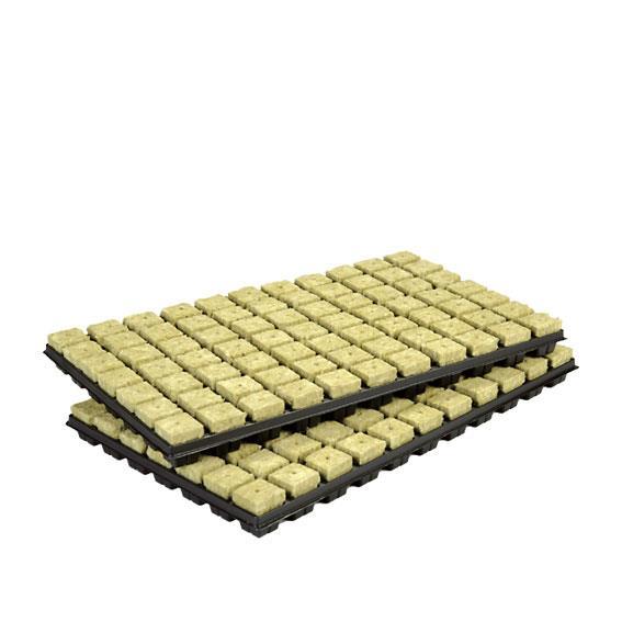 Grodan 77er Tray 3,6 x 3,6 cm